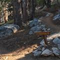 Junction with PCT.- San Jacinto Peak via Marion Mountain Trail