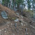 Lower trail.- San Jacinto Peak via Marion Mountain Trail