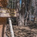 The area sees plenty of traffic, so conscientious travel is a must.- San Jacinto Peak via Marion Mountain Trail