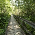 Boardwalk trail connecting Bench and Lakeside Campground.- Bench Campground