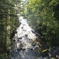Bear Creek below Bear Creek Falls.- Bear Creek Falls