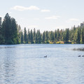 The Spokane River from Boulder Beach.- Spokane River, Boulder Beach