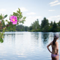 A bather wades into the Spokane River at Boulder Beach.- Spokane River, Boulder Beach