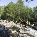 Bear Creek alongside the campground.- Bear Creek Recreation Site Campground