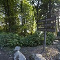 Campground signage along Harrison East Forest Service Road.- Cogburn Beach Recreation Site Campground
