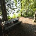 Typical campsite at Cogburn Recreation Site Campground.- Cogburn Beach Recreation Site Campground