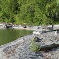 Harrison Lake shoreline at Cogburn Beach Recreation Site Campground.- Cogburn Beach Recreation Site Campground