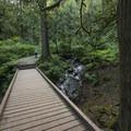 Trail en route to Bridal Veil Falls.- Bridal Veil Falls