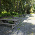 Typical campsites at Tamihi Creek East Recreation Site Campground.- Tamihi Creek East Recreation Site Campground