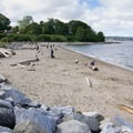 There's a sizeable off-leash dog area along the beach.- Hadden Park