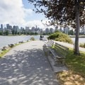 Pedestrian and bike paths through the park connect with neighboring parks.- Hadden Park