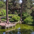 The pond at nearby Mirabeau Springs, across the street from the swimming hole.- Mirabeau Park Swimming Hole