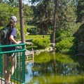 An overlook at the pond at nearby Mirabeau Springs.- Mirabeau Park Swimming Hole