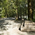 Tamihi Rapids Recreation Site Campground.- Tamihi Rapids Recreation Site Campground