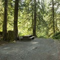 1 of 7 individual sites at Allison Pool Group Campground.- Allison Pool Recreation Site Group Campground