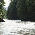Chilliwack River just above Allison Pool Group Campground.- Allison Pool Recreation Site Group Campground