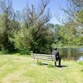 Observing wildlife and painting en plein air at the wildlife pond.- Jericho Park
