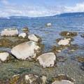 Tide pools at Kitsilano Beach.- Kitsilano Beach