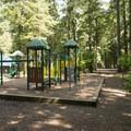 Playground at Sunnyside Campground.- Sunnyside Campground