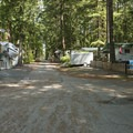 Semi-permanent RV/trailer sites at the beach and swimming area at Sunnyside Campground.- Sunnyside Campground