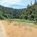 The campground lies next to the South Fork Eel River in Standish-Hickey State Recreation Area.- Redwood Campground