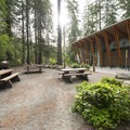 The Lynn Canyon Cafe and picnic area.- Lynn Canyon Suspension Bridge