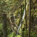 Adjacent water flowing down the canyon walls.- Lynn Canyon Suspension Bridge