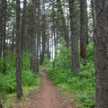 The Beaver Bay Shoreline Trail Loop connects Beaver Bay Beach with nearby Whitetail Campground.- Beaver Bay Beach