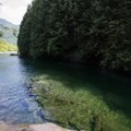 View of Gold Creek leading to Alouette Lake.- North Beach, Alouette Lake