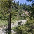 Views near the campground.- Redwood Campground