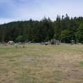 Large field and picnic area.- Bowman Bay