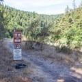 Trailhead near the day use area.- Big Tree Trail