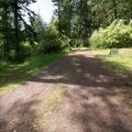 Take the south trail (left) for the lower grade.- Kukutali Preserve (Kiket Island)