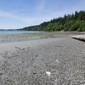 At low tide, the beach is mucky.- Similk Beach