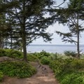 The path down to Libbey Beach.- Libbey Beach