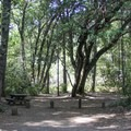 Typical site at Rock Creek Campground.- Rock Creek Campground