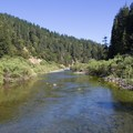 The South Fork of the Eel River flows through Richardson Grove State Park.- Richardson Grove State Park