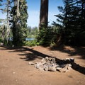 A primitive campsite on the shore of Link Lake.- Link Lake