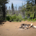 Dispersed camping areas can be found just off of the road.- Island Lake