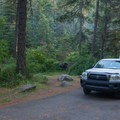 A typical site at Beauty Creek Campground.- Beauty Creek Campground