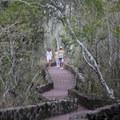 Tortuga Bay Trail.- Tortuga Bay