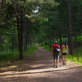 The upper portion of the trail runs along a service road.- Beaver Bay Shoreline Trail