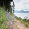 Beaver Bay Shoreline Trail.- Beaver Bay Shoreline Trail