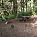 Typical site in Fernview Group Campground.- Fernview Group Campground