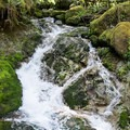 Boulder Creek forms a falls as it joins the South Santiam River.- Fernview Group Campground