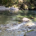 A small pool in the South Santiam River below Ferview Campground.- Fernview Swimming Holes