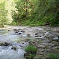 South Santiam River.- Fernview Swimming Holes