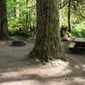 Typical site in Yukwah Campground.- Yukwah Campground