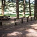 Typical site in Sharps Creek Recreation Area Campground.- Sharps Creek Recreation Area Campground