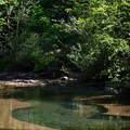The upper pool at Sharps Creek.- Sharps Creek Recreation Area Swimming Hole